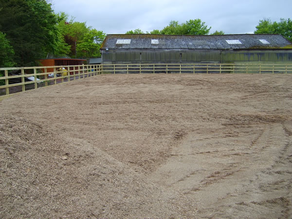 Greenwells Arenas No 1 Specialist For Horse Riding